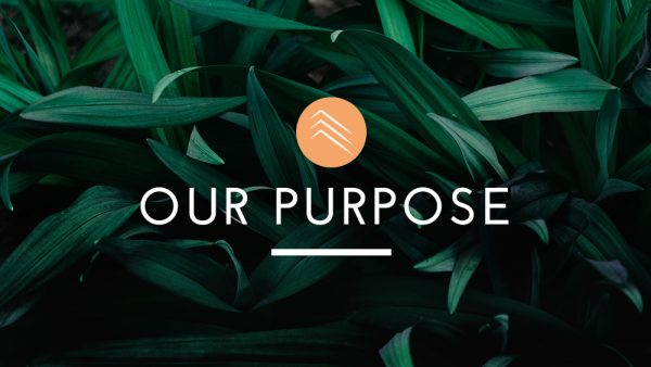 Our Purpose Pt. 1 Image